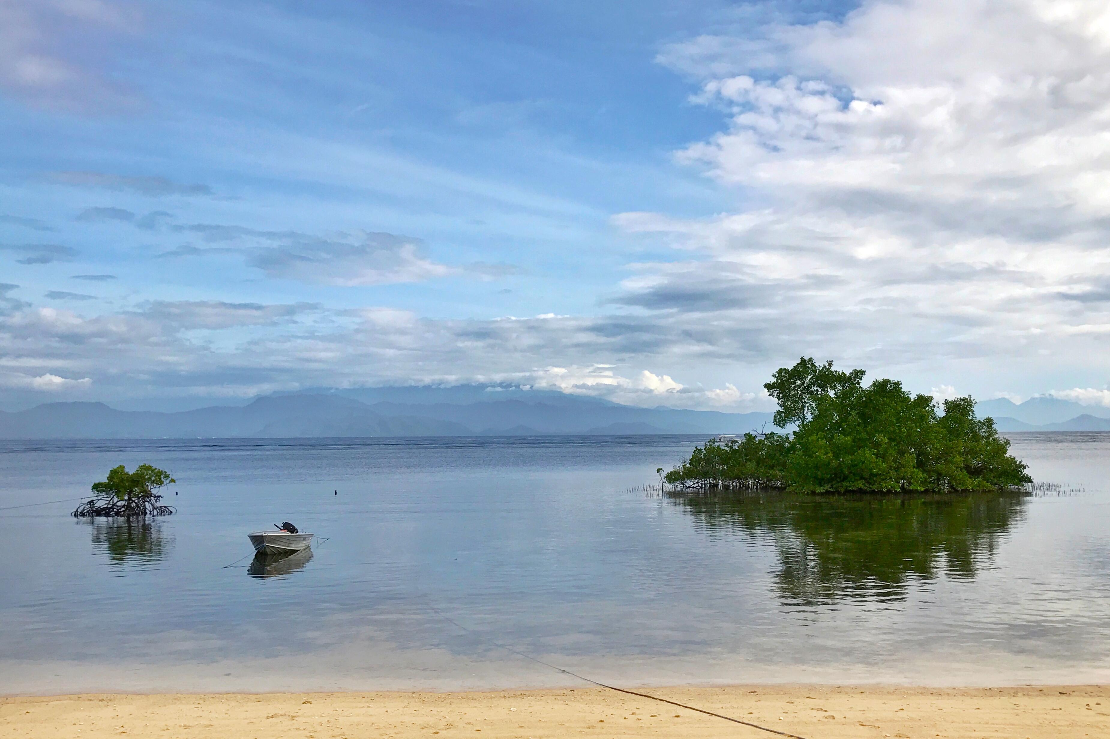 Voyage Nusa Lembongan ile paradisiaque Bali Mangrove