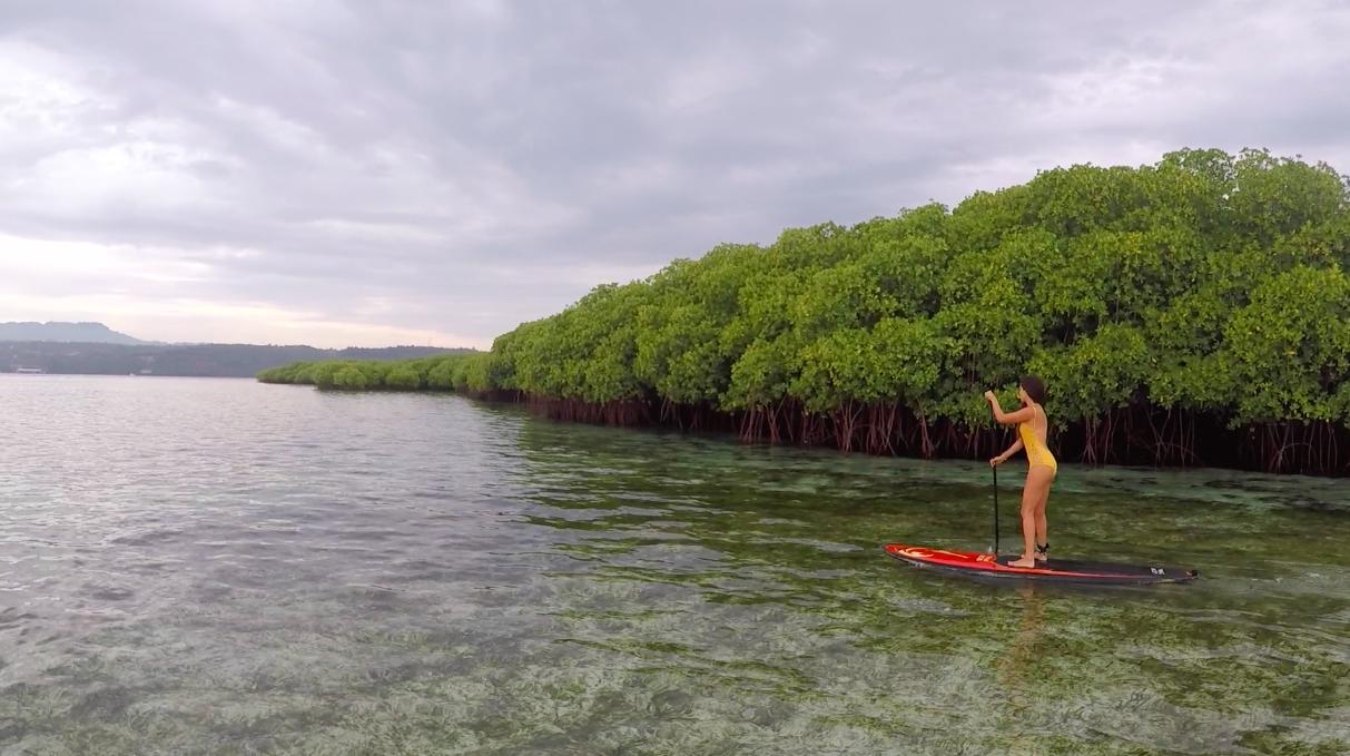 Voyage Nusa Lembongan ile paradisiaque Bali Paddle Mangrove