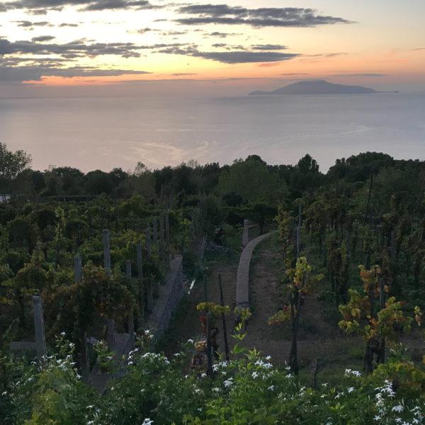 Week-end sportif à Capri avec Goretex